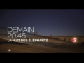 2014 | Documentaire (Fêtes)