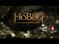 2017 | Le Hobbit : La Désolation de Smaug