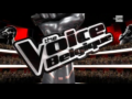 2011 | The Voice Belgique