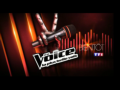 2013 | The Voice